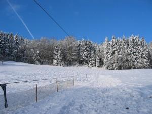 Winter 2011 037