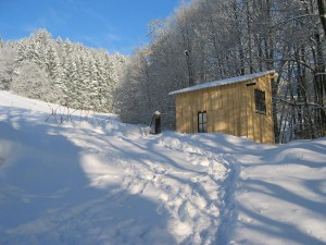 Winter 2011 050